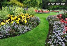 tips til haven